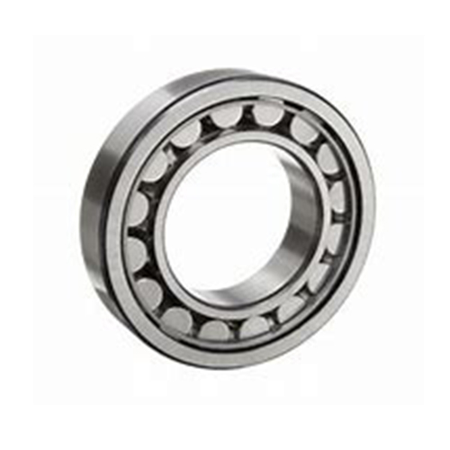 Cylindrical Roller Bearing NUP22 Series